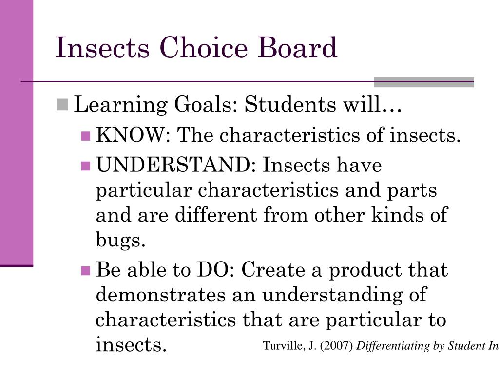 Insects Choice Board
