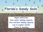 florida s sandy soils