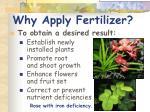 why apply fertilizer