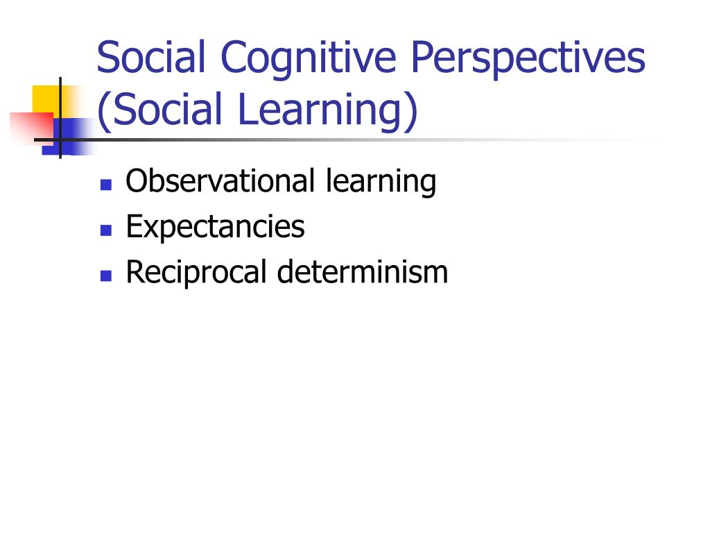 Social Cognitive Perspectives (Social Learning)
