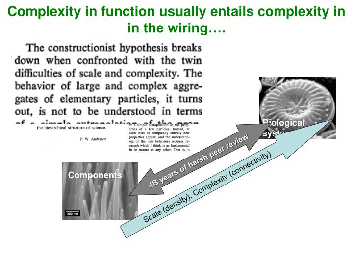 Complexity in function usually entails complexity in in the wiring