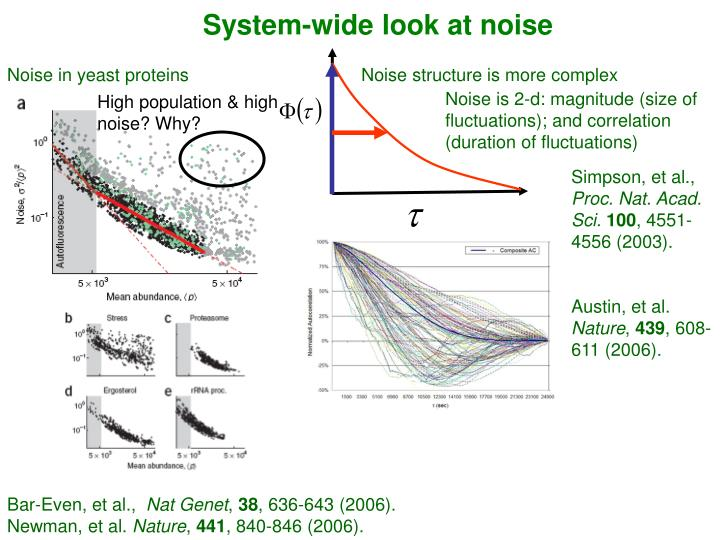 System-wide look at noise