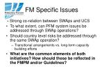 fm specific issues