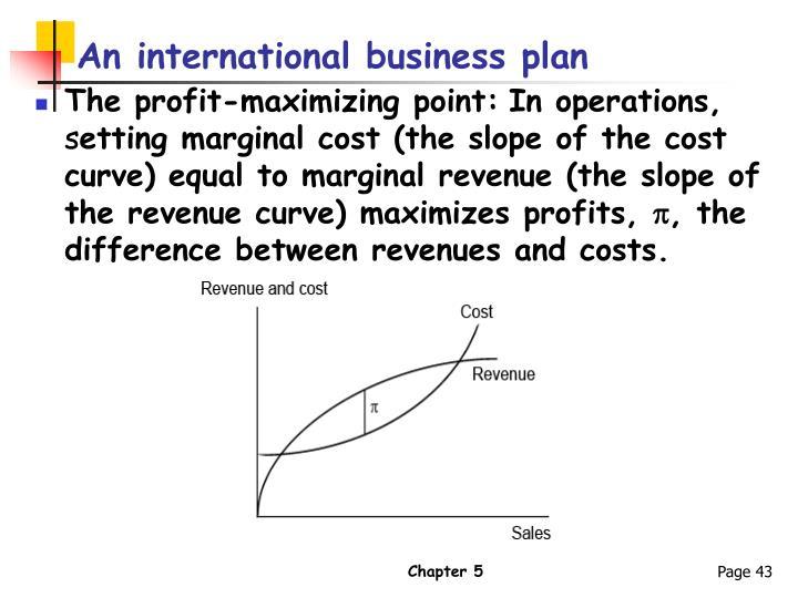 An international business plan