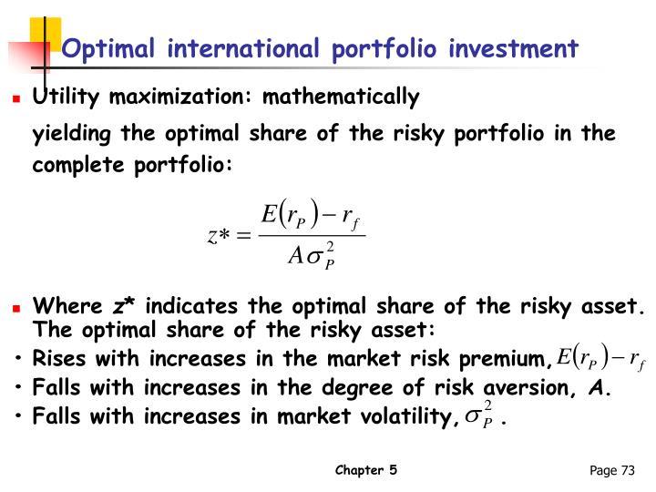 Optimal international portfolio investment