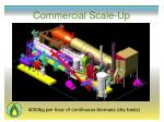commercial scale up