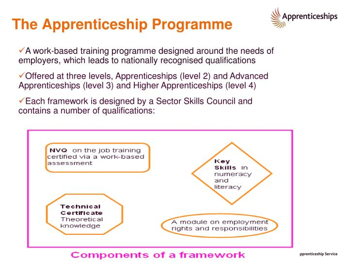 The apprenticeship programme