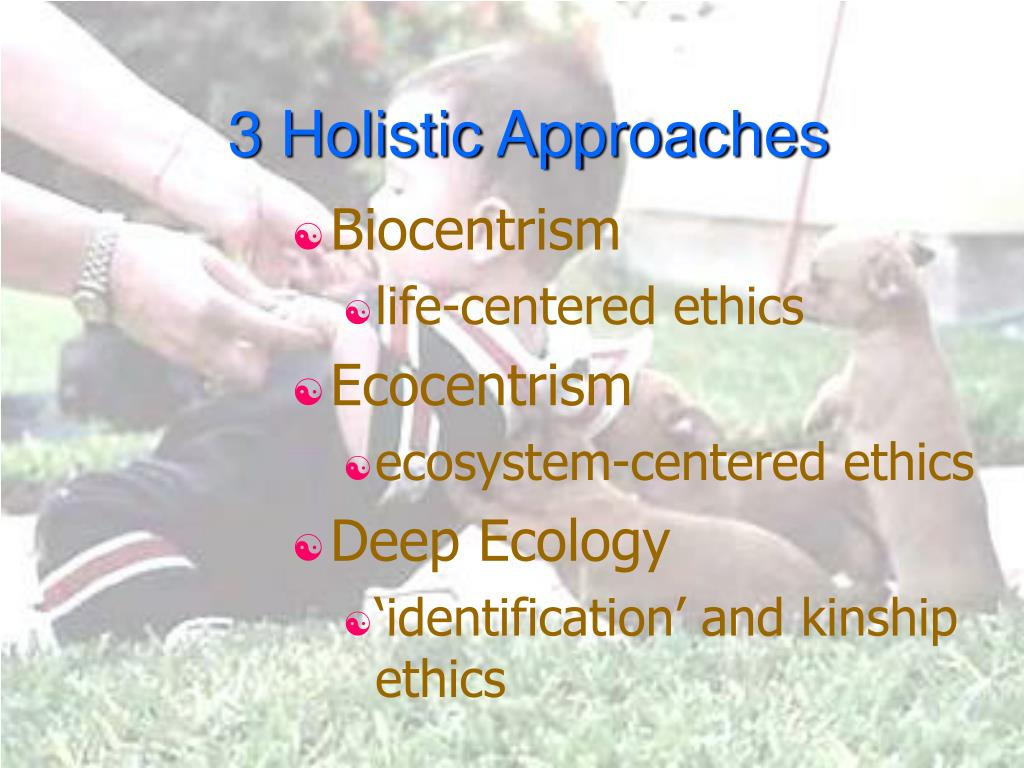 3 Holistic Approaches