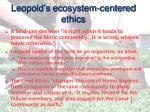 leopold s ecosystem centered ethics