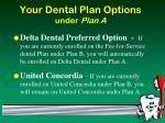 your dental plan options under plan a47