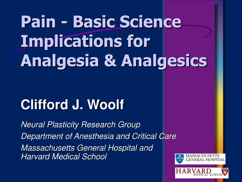 pain basic science implications for analgesia analgesics l.