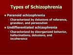 types of schizophrenia20