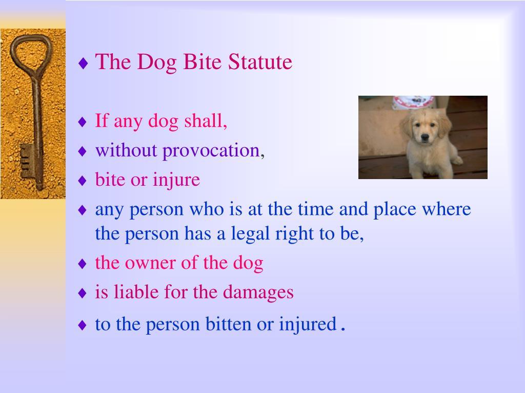 The Dog Bite Statute