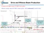 drive and witness beam production