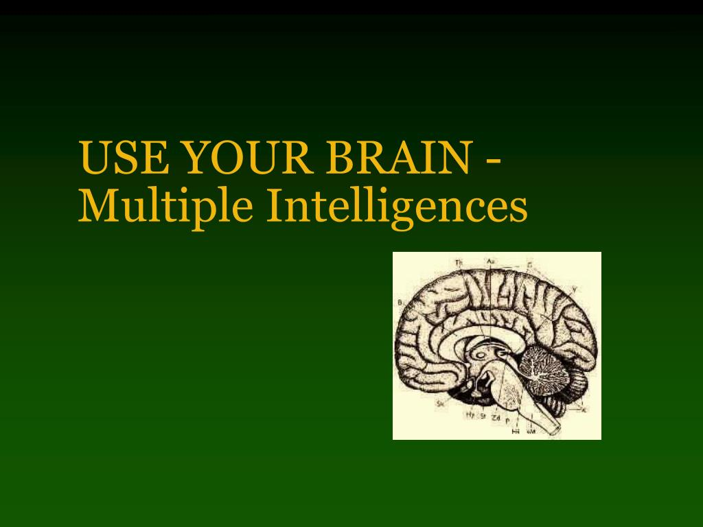 use your brain multiple intelligences l.
