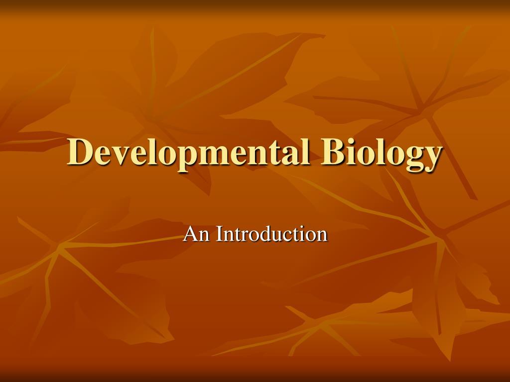 developmental biology l.