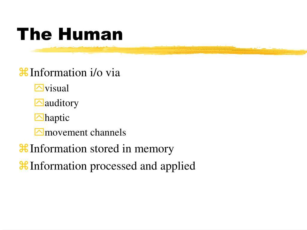 the human l.