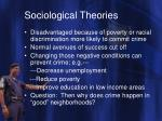 sociological theories8