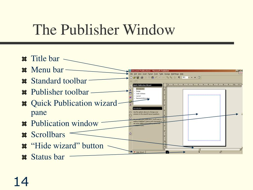 The Publisher Window
