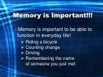 memory is important
