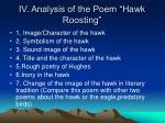 iv analysis of the poem hawk roosting