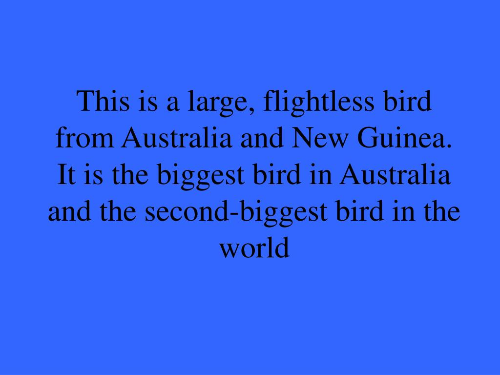 This is a large, flightless bird from Australia and New Guinea. It is the biggest bird in Australia and the second-biggest bird in the world