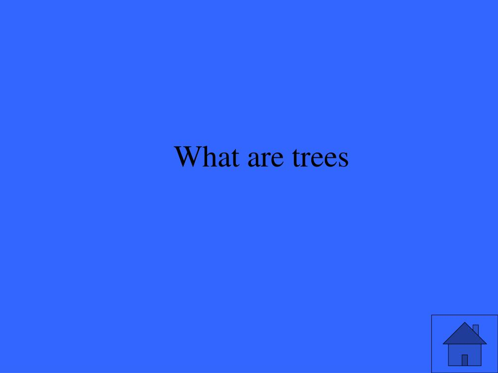 What are trees