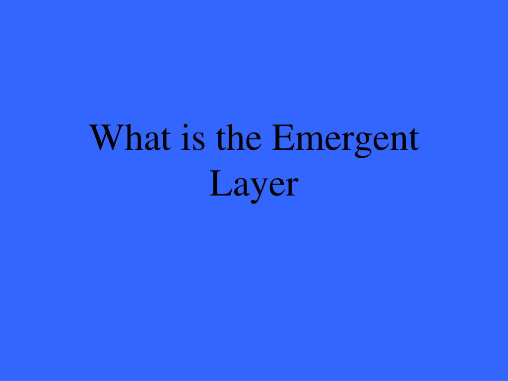 What is the Emergent Layer