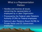 what is a representation petition