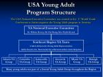 usa young adult program structure