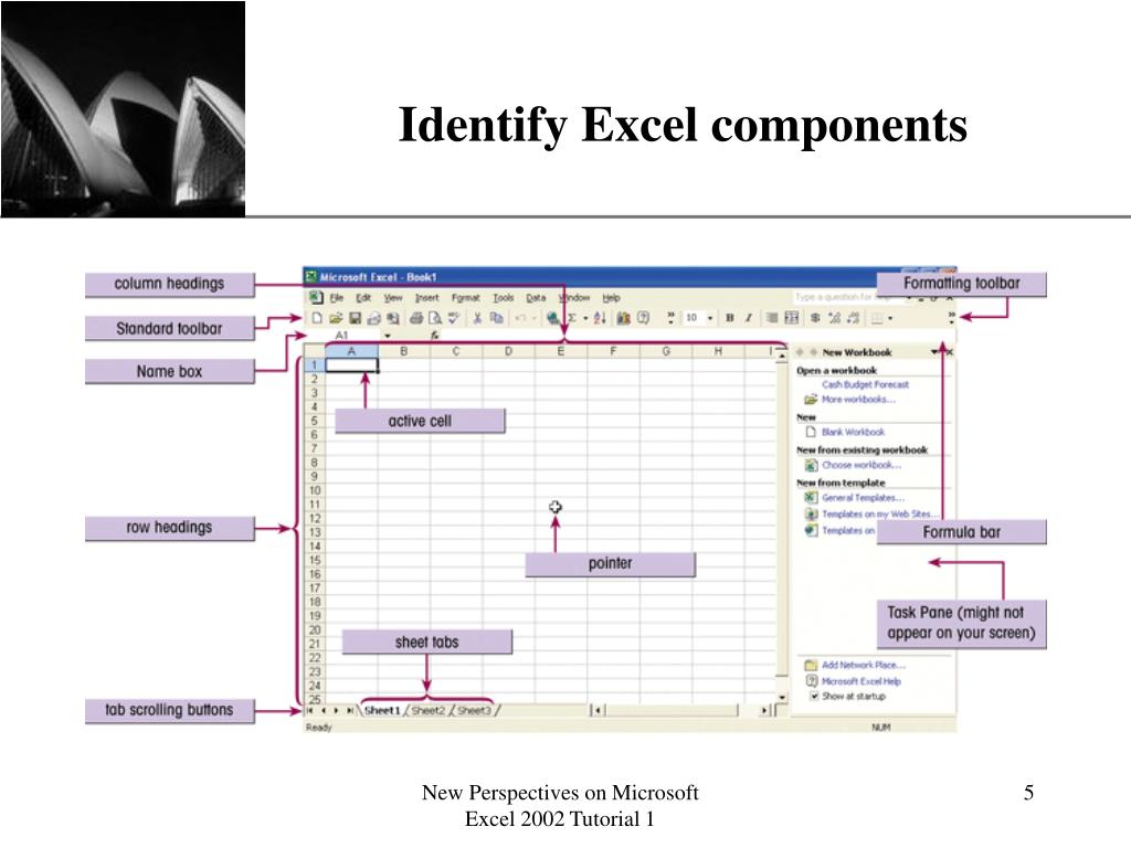 Identify Excel components