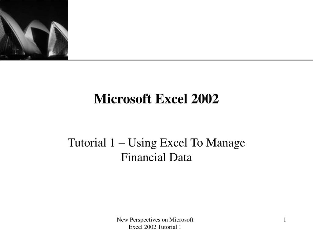 microsoft excel 2002 l.