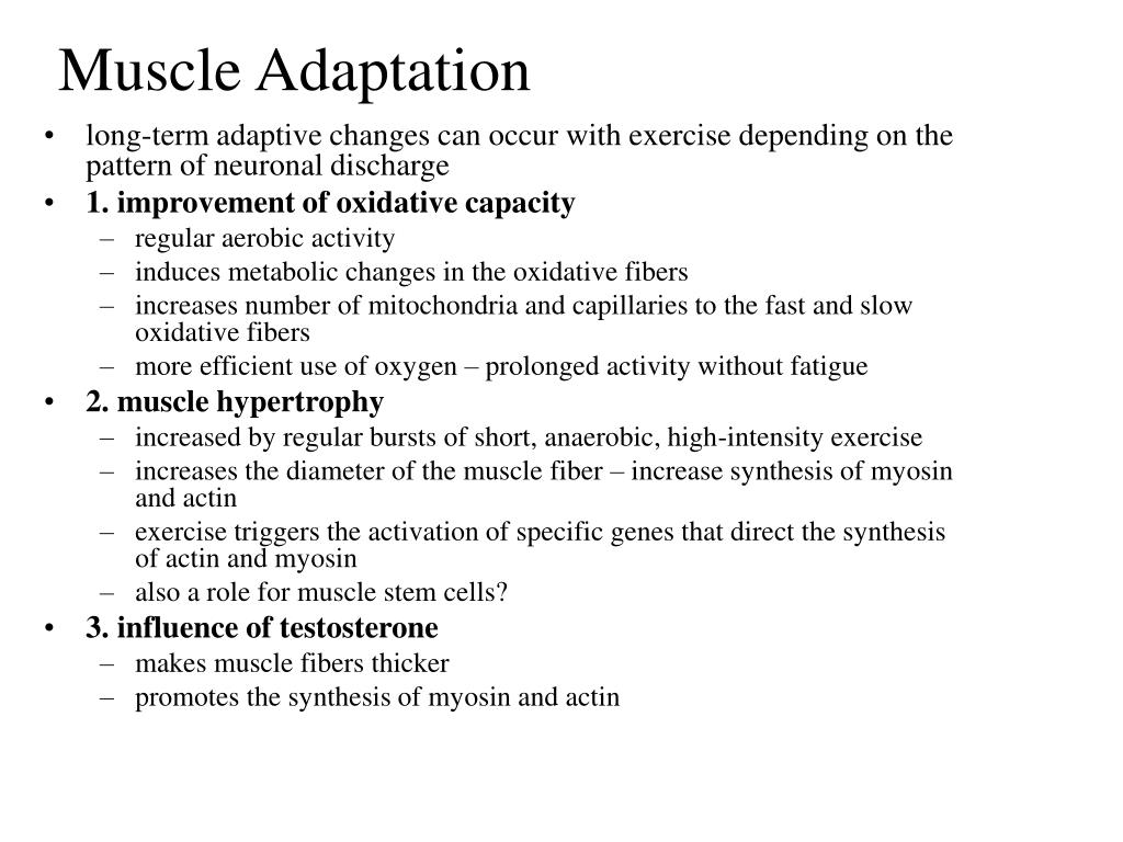 Muscle Adaptation
