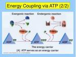 energy coupling via atp 2 2