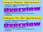 exergonic reaction spontaneous