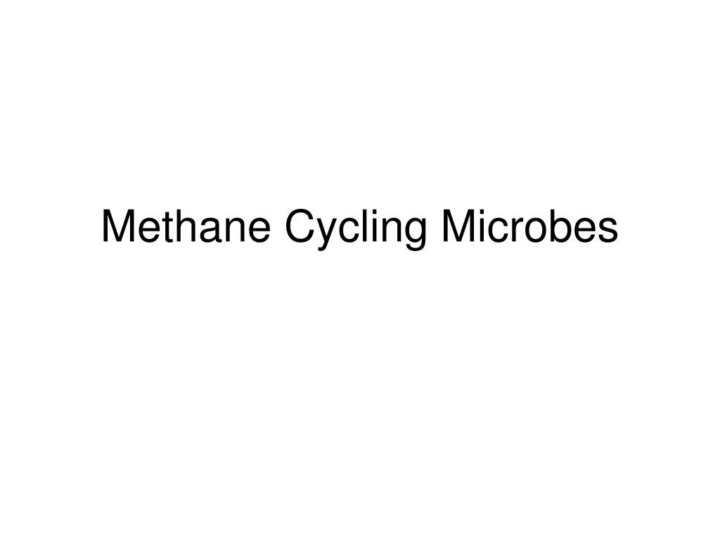 Methane Cycling Microbes