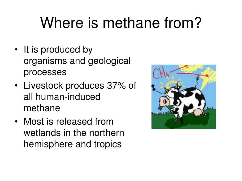 Where is methane from?