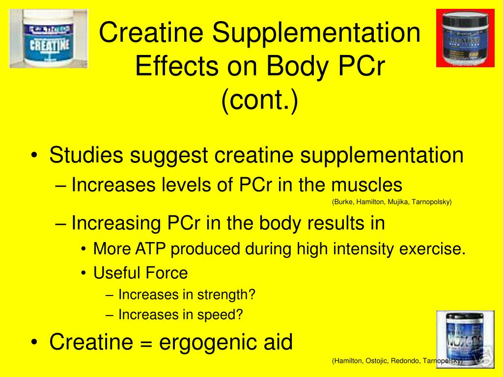 Creatine Supplementation Effects on Body PCr (cont.)