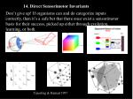 14 direct sensorimotor invariants