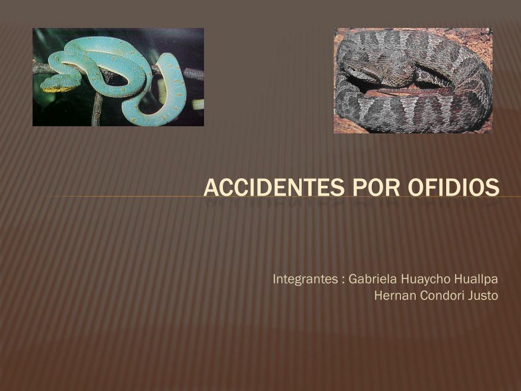 accidentes por ofidios l.
