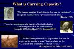 what is carrying capacity