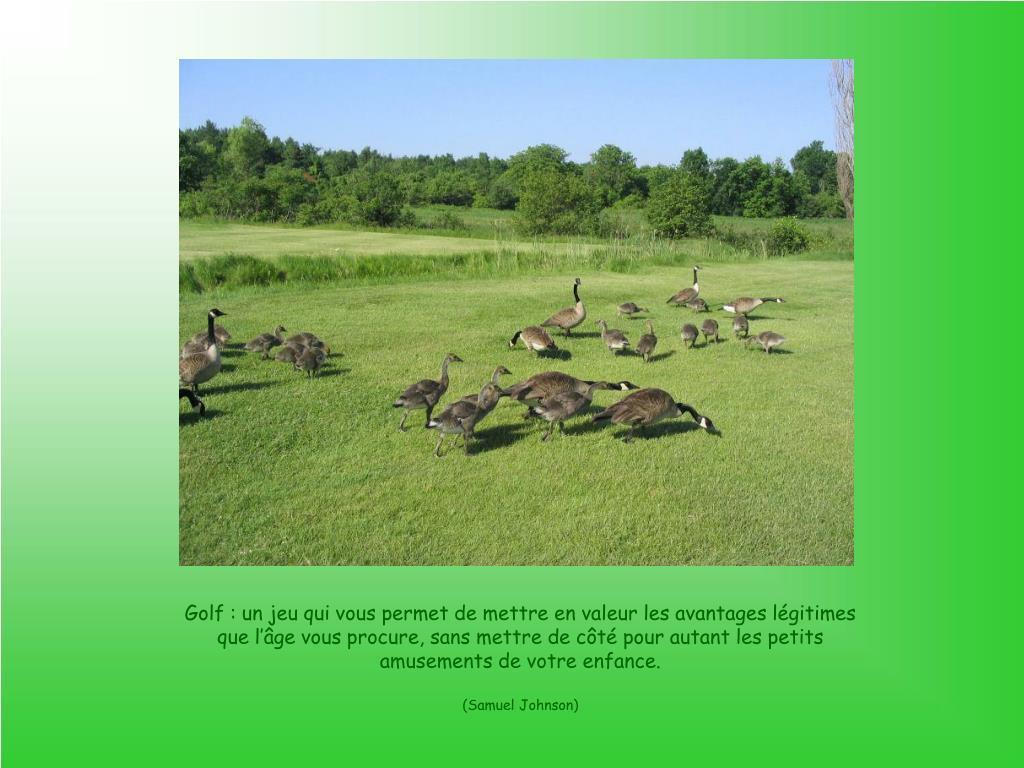 Golf: un jeu qui vous permet de mettre en valeur les avantages légitimes que l'âge vous procure, sans mettre de côté pour autant les petits amusements de votre enfance.