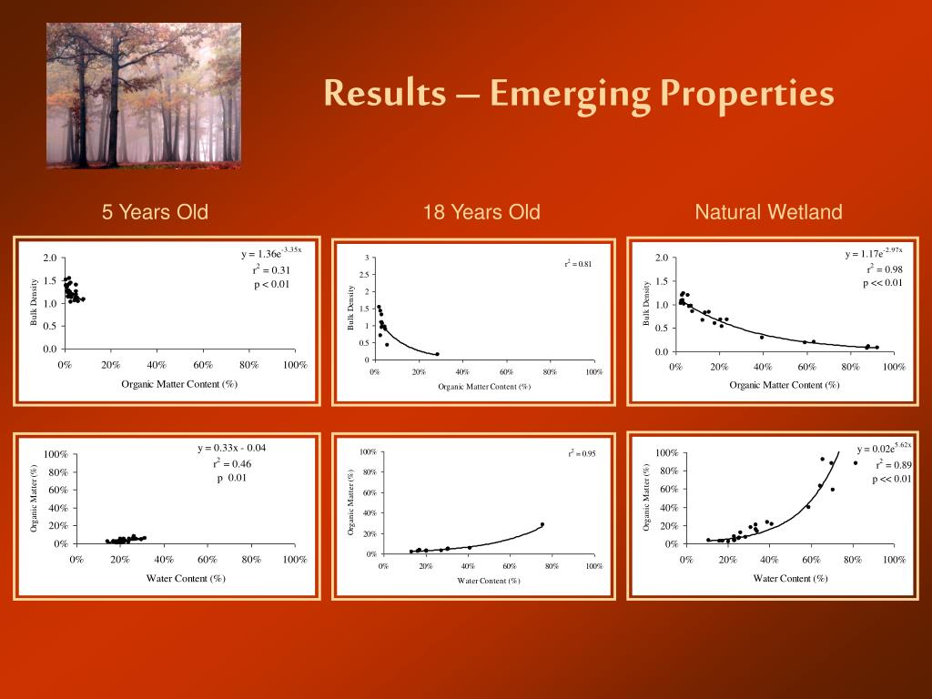Results – Emerging Properties