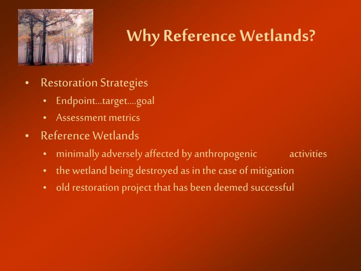 Why reference wetlands