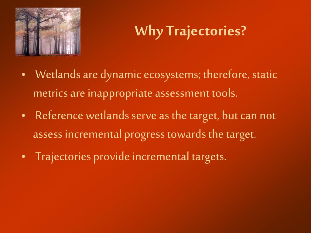 Why Trajectories?