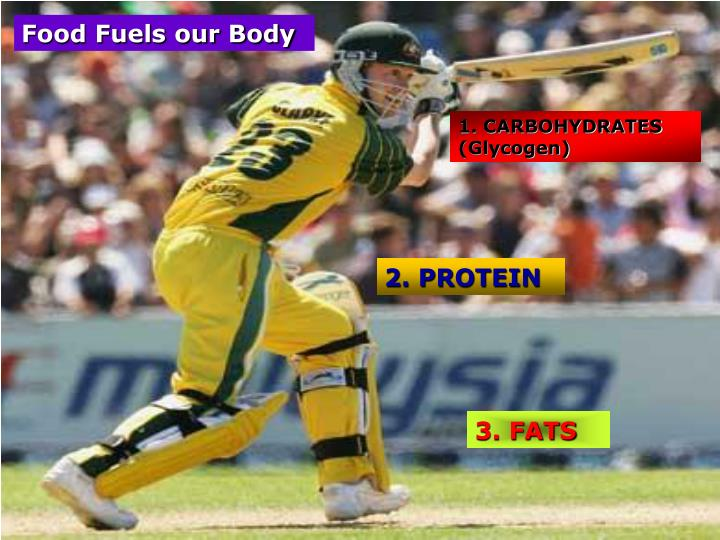 Food Fuels our Body