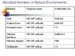 microbial numbers in natural environments