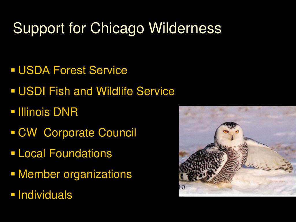 Support for Chicago Wilderness
