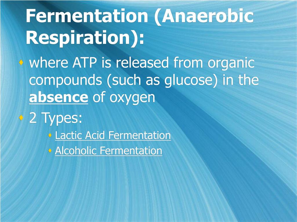 Fermentation (Anaerobic Respiration):