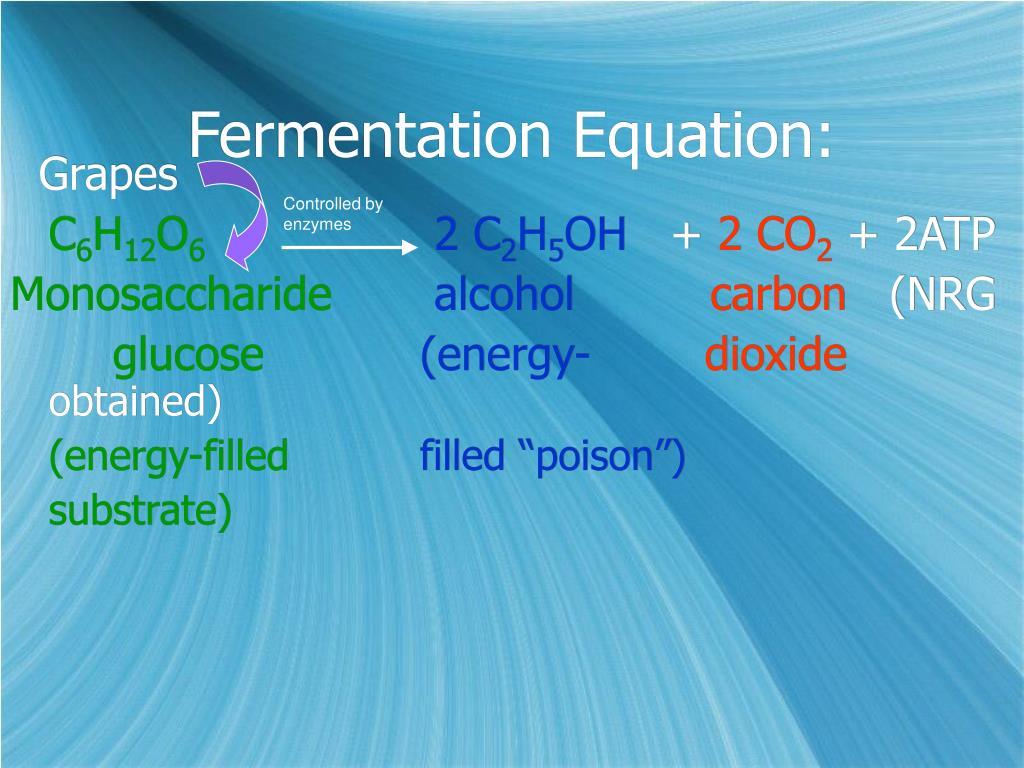 Fermentation Equation: